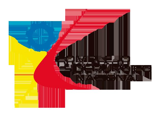 Complejo Sidirergico Nacional